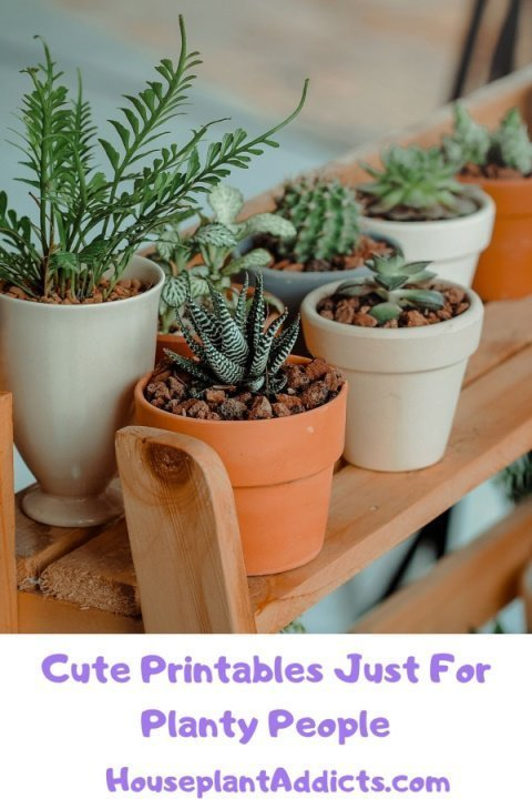 Cute Printables Just For Planty People