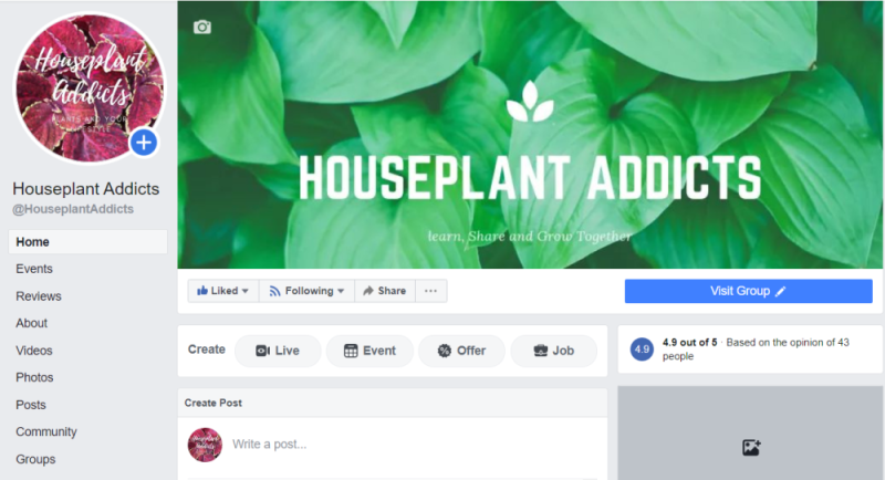 Houseplant Addicts Fan Page