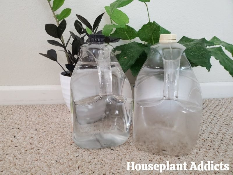 Houseplant Watering Containers