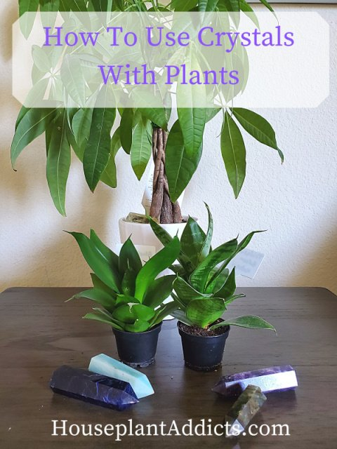 How To Use Crystals With Plants